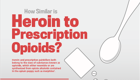 Heroin and painkiller infographic